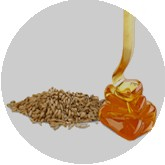 Oat Syrups